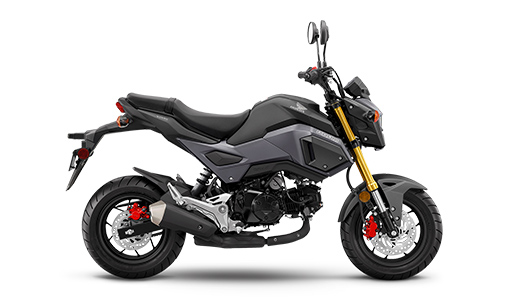 New Honda Naked Grom Motorcycle for sale in Ottawa